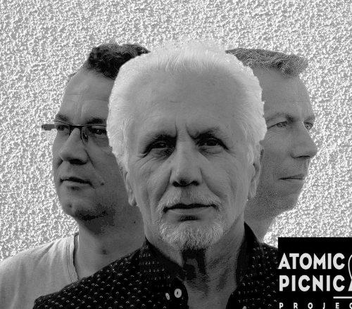 atomicpicnicproject